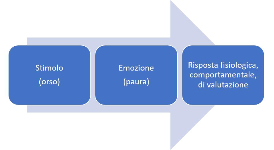 grafico stimolo emozione risposta - cos'è una emozione